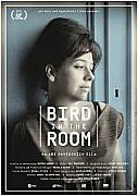 Watch Full Movie - Bird in the Room - Watch Documentries